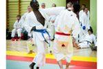 competition_paris_2014_54_20141108_1358563316